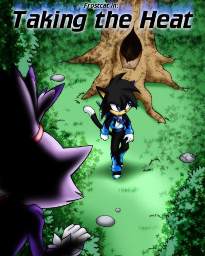 [Palcomix] Taking the Heat (Sonic the Hedgehog)