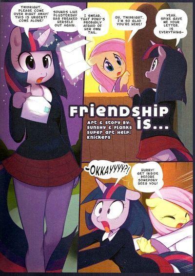 友谊 是 ....
