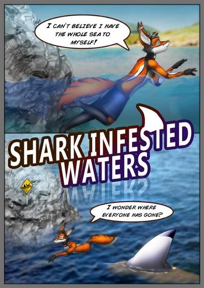 shark befallen Wasser